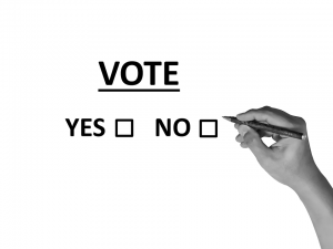 votare e un diritto e dovere
